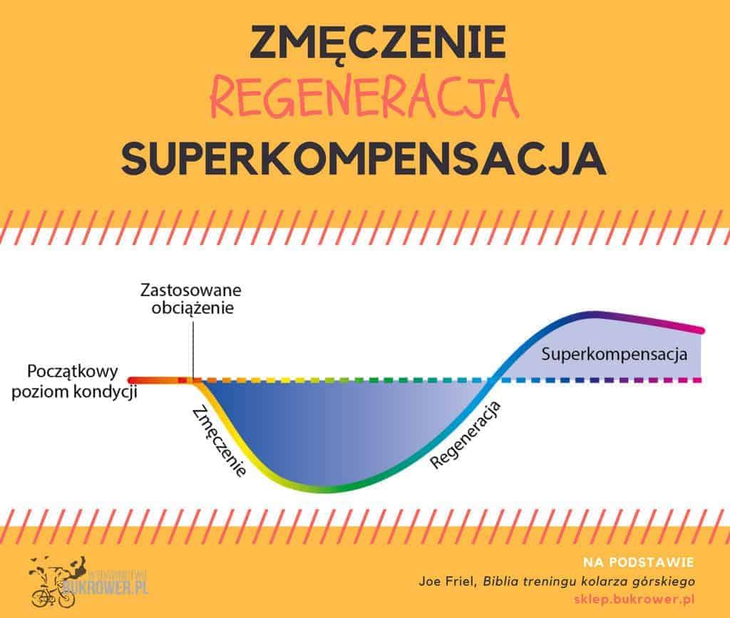 regeneracja potreningu - wykres zmęczenie, regeneracja, superkompensacja