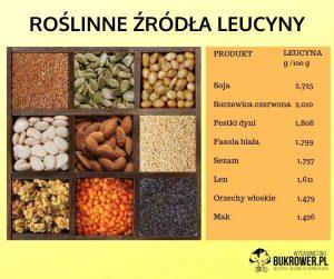 Grafika poglądowa dla wegańskich sportowców, jakie są najbogatsze roślinne źródła leucyny